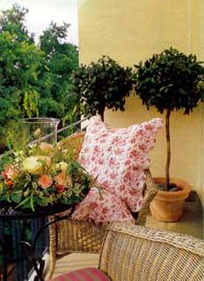 балконы и цветы