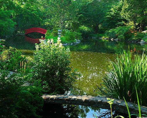каменный мостик в саду