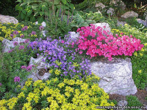 Засадка альпинария растениями