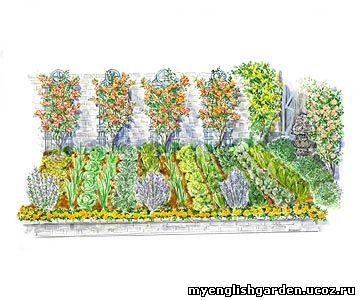 Дух захватывающий <b>план</b> садового участка.  <b>Огород</b> для салатов и зелени