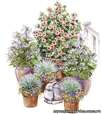 Garden Home Macro Level Container Garden Design Home